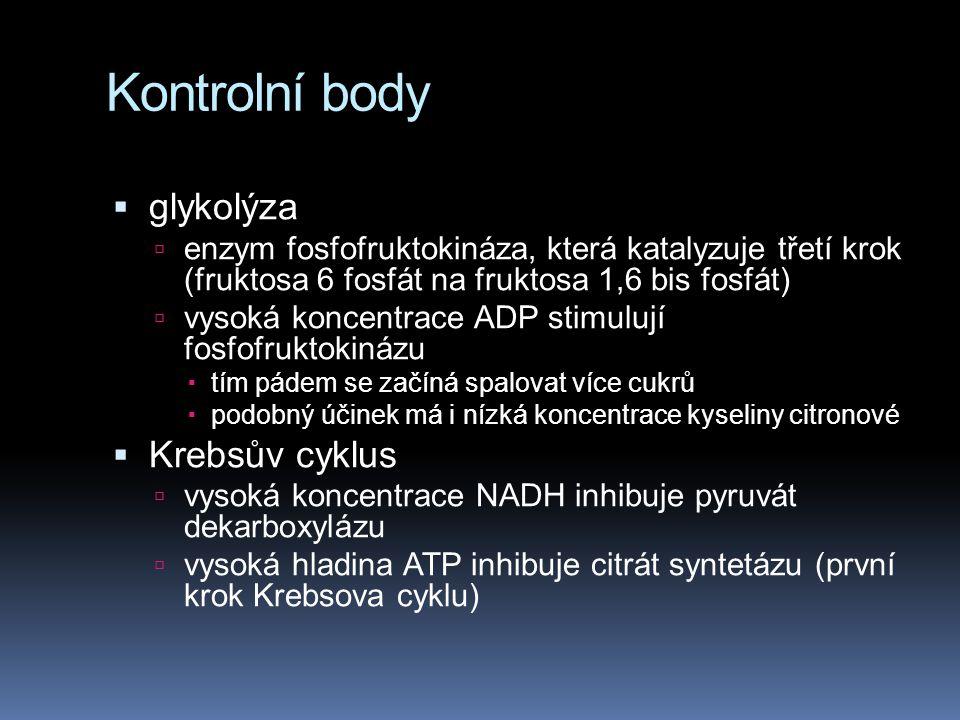 Kontrolní body  glykolýza  enzym fosfofruktokináza, která katalyzuje třetí krok (fruktosa 6 fosfát na fruktosa 1,6 bis fosfát)  vysoká koncentrace