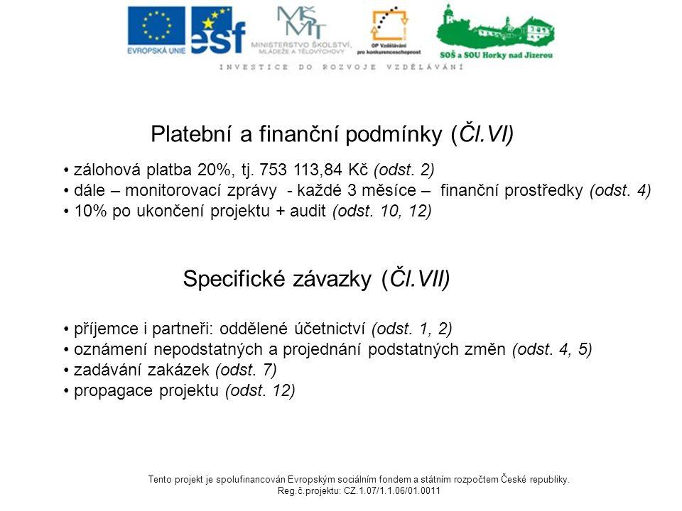 Platební a finanční podmínky (Čl.VI) zálohová platba 20%, tj.