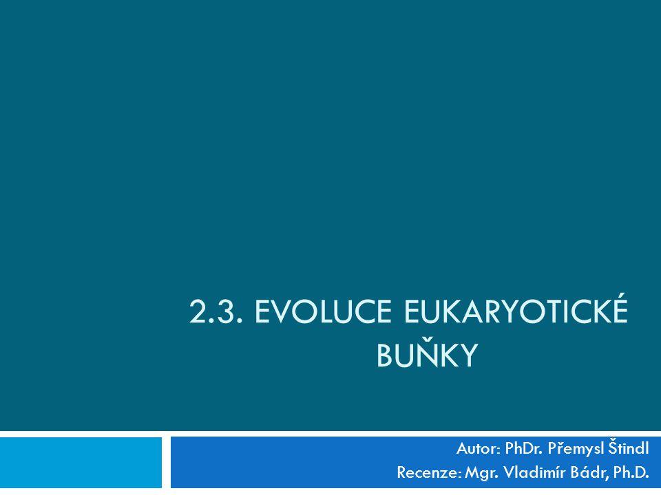 2.3. EVOLUCE EUKARYOTICKÉ BUŇKY Autor: PhDr. Přemysl Štindl Recenze: Mgr. Vladimír Bádr, Ph.D.