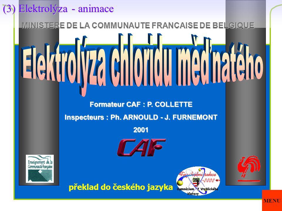 MINISTERE DE LA COMMUNAUTE FRANCAISE DE BELGIQUE Formateur CAF : P. COLLETTE Inspecteurs : Ph. ARNOULD - J. FURNEMONT 2001 překlad do českého jazyka (