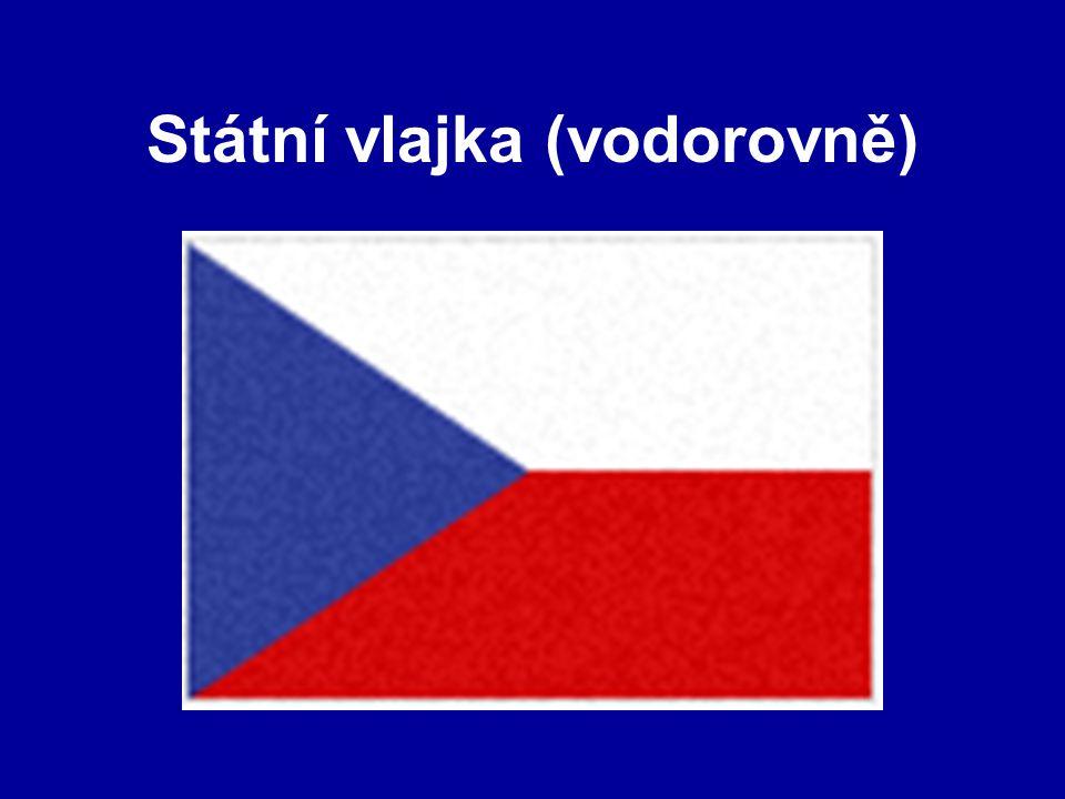 Státní vlajka (vodorovně)