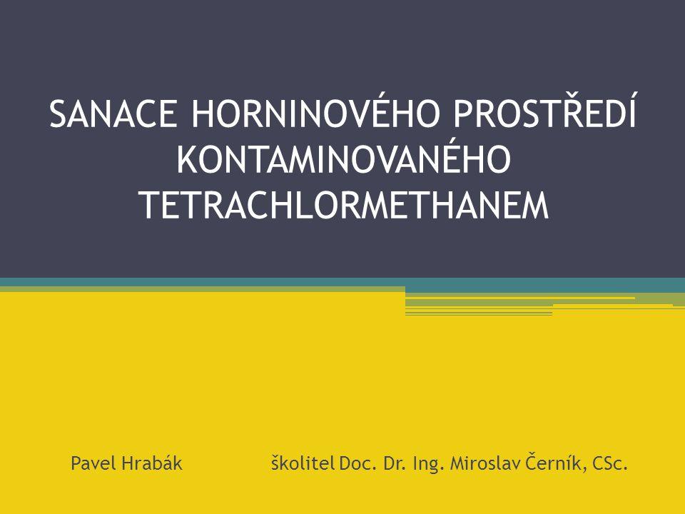 SANACE HORNINOVÉHO PROSTŘEDÍ KONTAMINOVANÉHO TETRACHLORMETHANEM Pavel Hrabák školitel Doc. Dr. Ing. Miroslav Černík, CSc.
