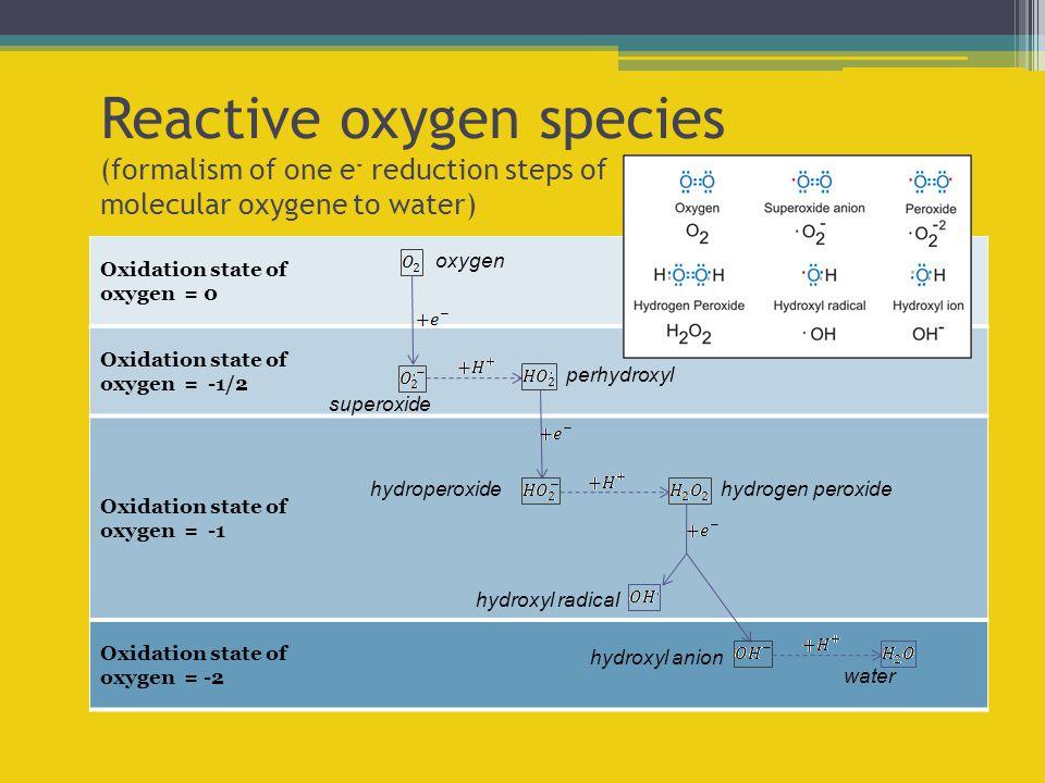 Oxidation state of oxygen = -2 Oxidation state of oxygen = -1 Oxidation state of oxygen = -1/2 Oxidation state of oxygen = 0 Reactive oxygen species (