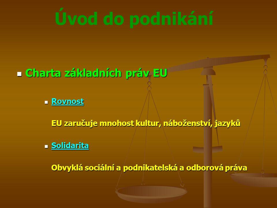 Úvod do podnikání Charta základních práv EU Charta základních práv EU Rovnost Rovnost EU zaručuje mnohost kultur, náboženství, jazyků Solidarita Solid