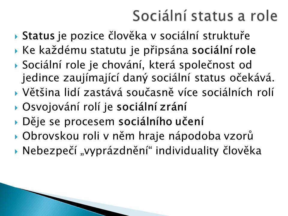  Status je pozice člověka v sociální struktuře  Ke každému statutu je připsána sociální role  Sociální role je chování, která společnost od jedince zaujímající daný sociální status očekává.