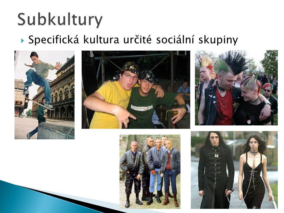  Specifická kultura určité sociální skupiny