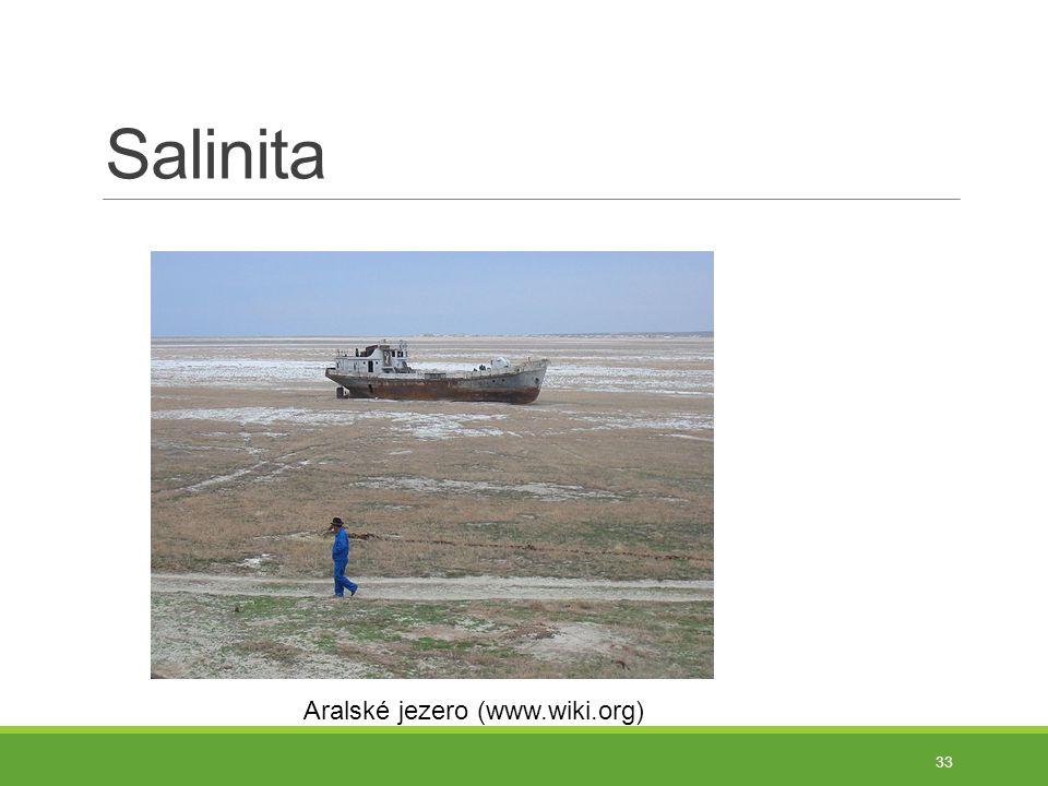 Salinita 33 Aralské jezero (www.wiki.org)