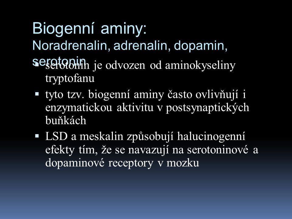 Biogenní aminy: Noradrenalin, adrenalin, dopamin, serotonin  serotonin je odvozen od aminokyseliny tryptofanu  tyto tzv. biogenní aminy často ovlivň
