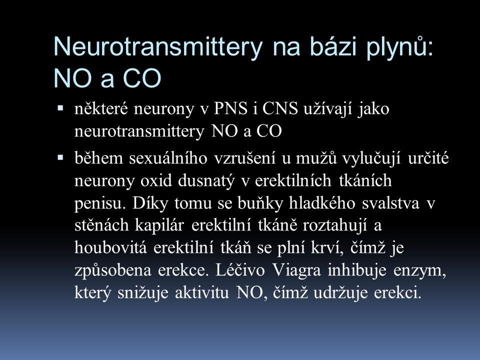 Neurotransmittery na bázi plynů: NO a CO  některé neurony v PNS i CNS užívají jako neurotransmittery NO a CO  během sexuálního vzrušení u mužů vyluč