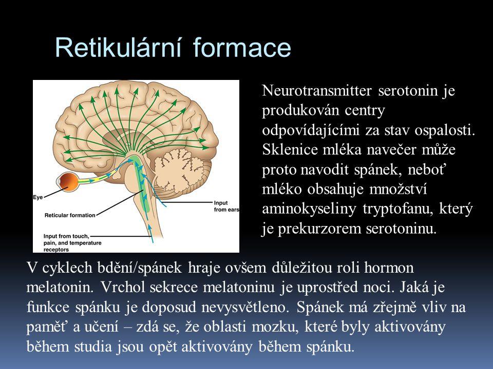Retikulární formace Neurotransmitter serotonin je produkován centry odpovídajícími za stav ospalosti. Sklenice mléka navečer může proto navodit spánek