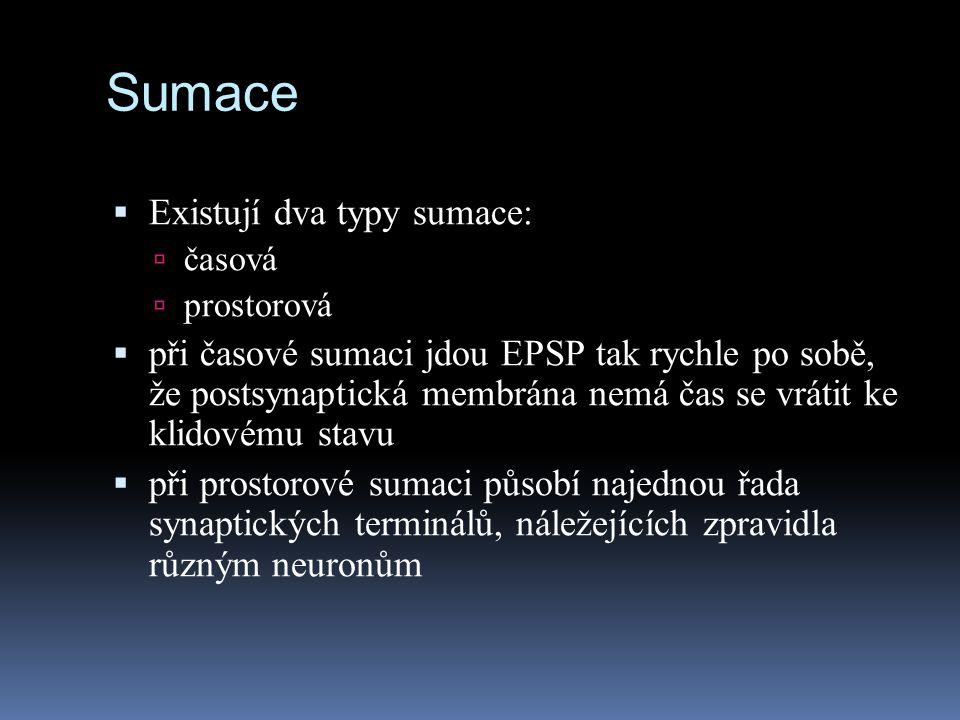 Sumace  Existují dva typy sumace:  časová  prostorová  při časové sumaci jdou EPSP tak rychle po sobě, že postsynaptická membrána nemá čas se vrát