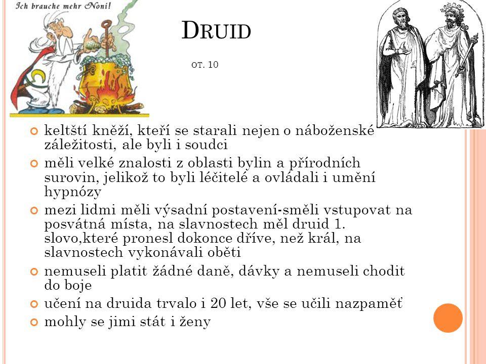D RUID OT. 10 keltští kněží, kteří se starali nejen o náboženské záležitosti, ale byli i soudci měli velké znalosti z oblasti bylin a přírodních surov