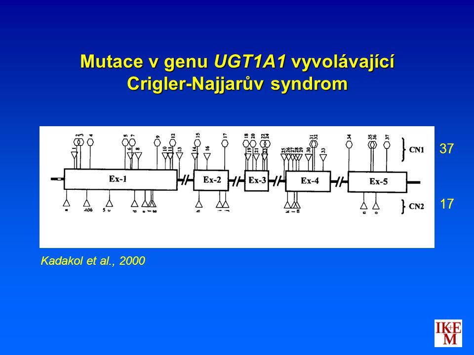 Mutace v genu UGT1A1 vyvolávající Crigler-Najjarův syndrom Kadakol et al., 2000 37 17