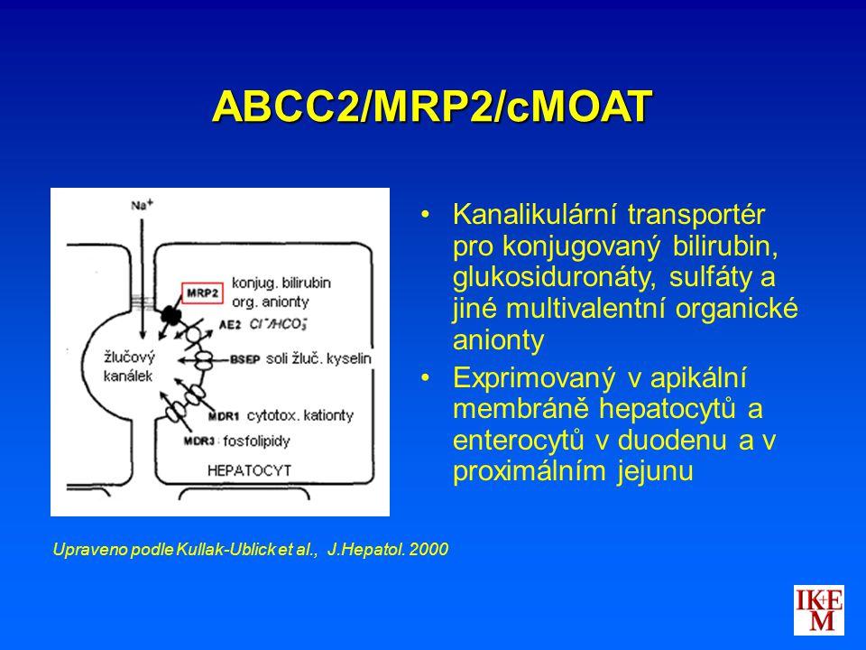 ABCC2/MRP2/cMOAT Kanalikulární transportér pro konjugovaný bilirubin, glukosiduronáty, sulfáty a jiné multivalentní organické anionty Exprimovaný v ap