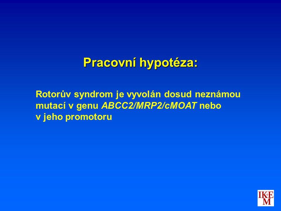 Pracovní hypotéza: Rotorův syndrom je vyvolán dosud neznámou mutací v genu ABCC2/MRP2/cMOAT nebo v jeho promotoru