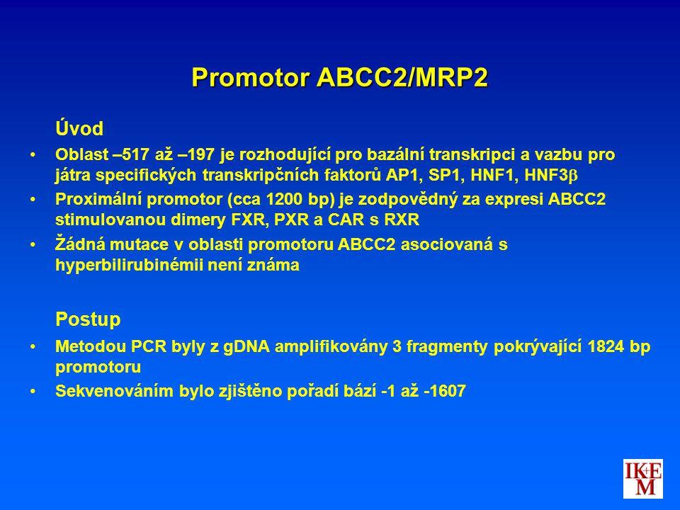 Promotor ABCC2/MRP2 Úvod Oblast –517 až –197 je rozhodující pro bazální transkripci a vazbu pro játra specifických transkripčních faktorů AP1, SP1, HN