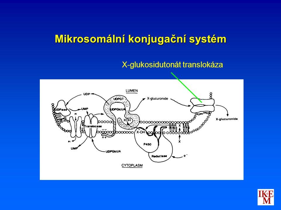 Mikrosomální konjugační systém X-glukosidutonát translokáza