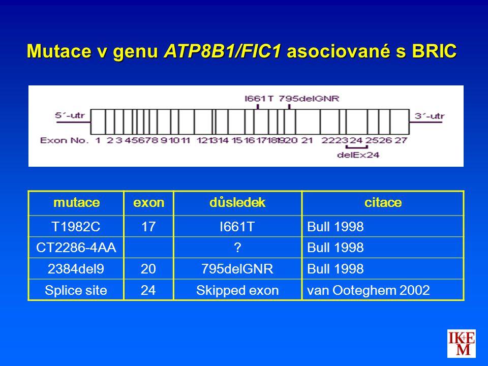 mutaceexondůsledekcitace T1982C17I661TBull 1998 CT2286-4AA?Bull 1998 2384del920795delGNRBull 1998 Splice site24Skipped exonvan Ooteghem 2002 Mutace v