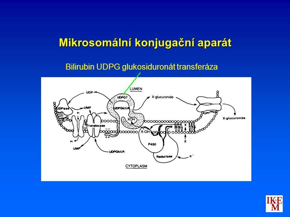 Mikrosomální konjugační aparát Bilirubin UDPG glukosiduronát transferáza