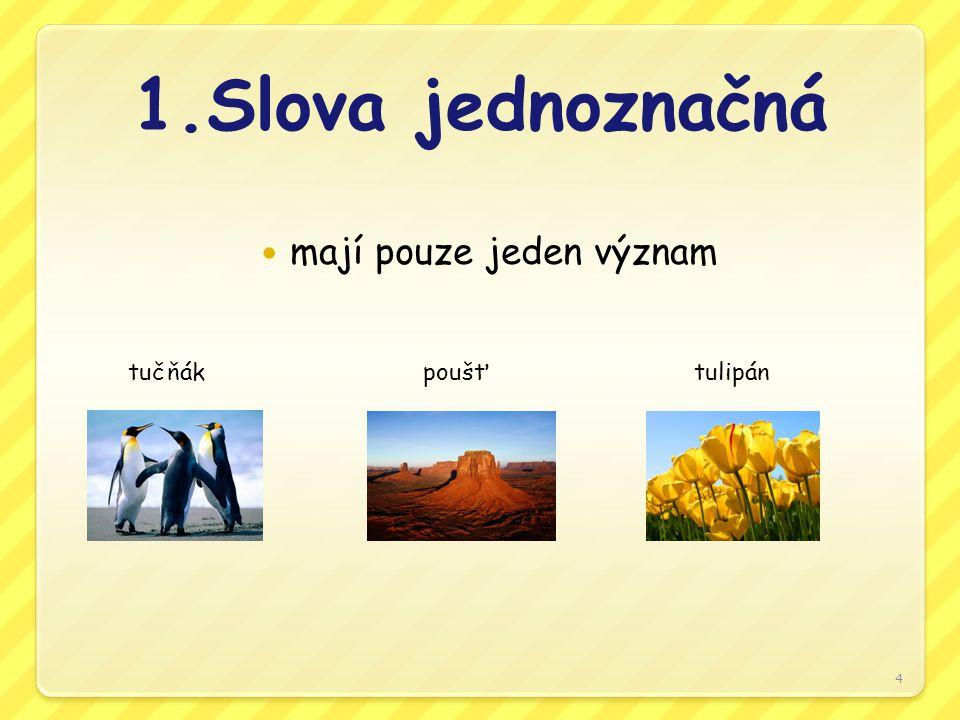 1.Slova jednoznačná mají pouze jeden význam tučňák poušť tulipán 4