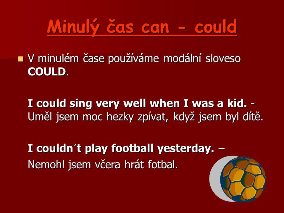 Minulý čas can - could V minulém čase používáme modální sloveso COULD.