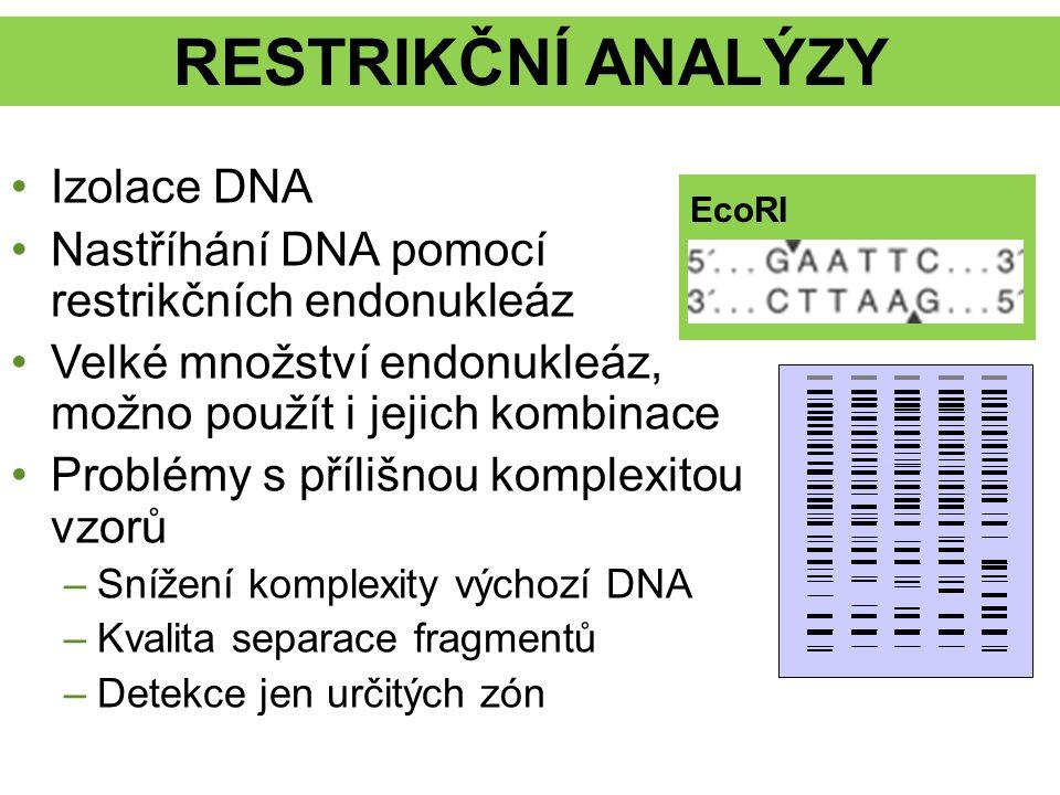 RESTRIKČNÍ ANALÝZY Izolace DNA Nastříhání DNA pomocí restrikčních endonukleáz Velké množství endonukleáz, možno použít i jejich kombinace Problémy s p