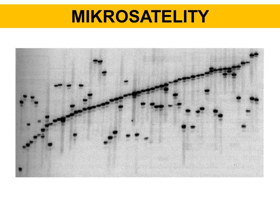 MIKROSATELITY