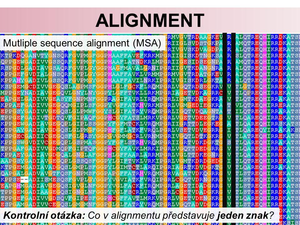 ALIGNMENT Mutliple sequence alignment (MSA) Kontrolní otázka: Co v alignmentu představuje jeden znak?