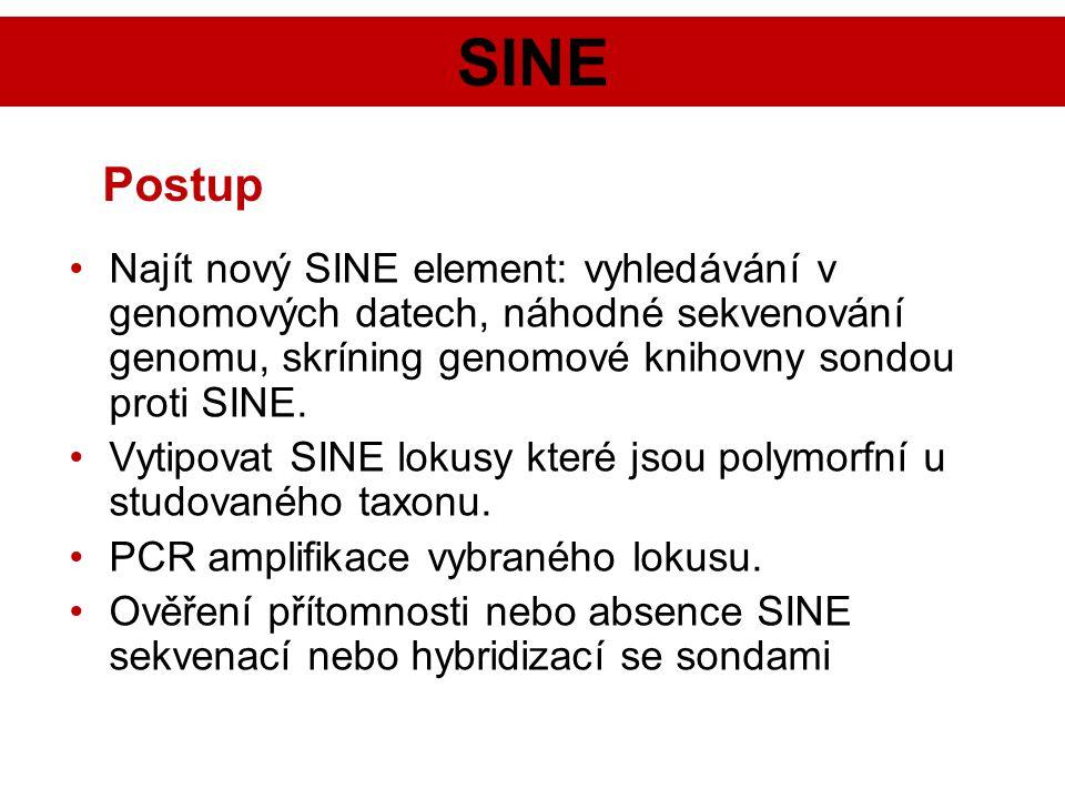 SINE Najít nový SINE element: vyhledávání v genomových datech, náhodné sekvenování genomu, skríning genomové knihovny sondou proti SINE. Vytipovat SIN