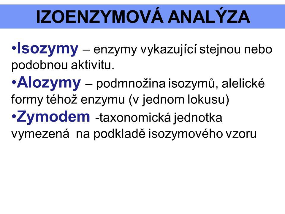 IZOENZYMOVÁ ANALÝZA Isozymy – enzymy vykazující stejnou nebo podobnou aktivitu. Alozymy – podmnožina isozymů, alelické formy téhož enzymu (v jednom lo