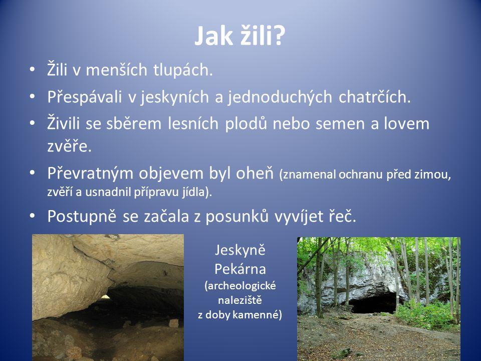 Jak žili? Žili v menších tlupách. Přespávali v jeskyních a jednoduchých chatrčích. Živili se sběrem lesních plodů nebo semen a lovem zvěře. Převratným