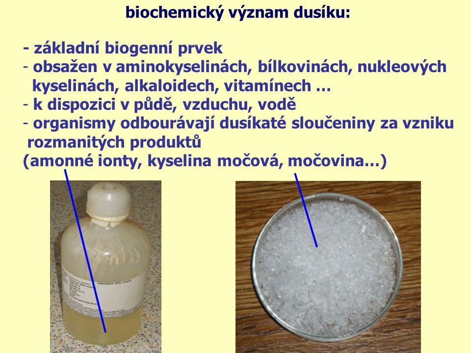 biochemický význam dusíku: - základní biogenní prvek - obsažen v aminokyselinách, bílkovinách, nukleových kyselinách, alkaloidech, vitamínech … - k di