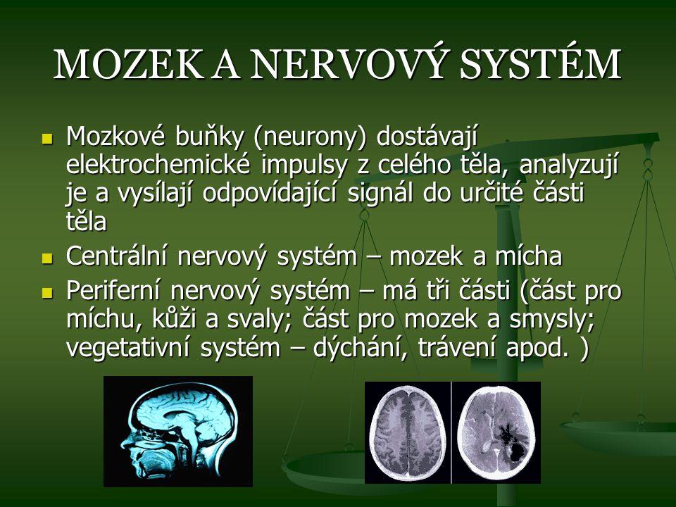 MOZEK A NERVOVÝ SYSTÉM Mozkové buňky (neurony) dostávají elektrochemické impulsy z celého těla, analyzují je a vysílají odpovídající signál do určité