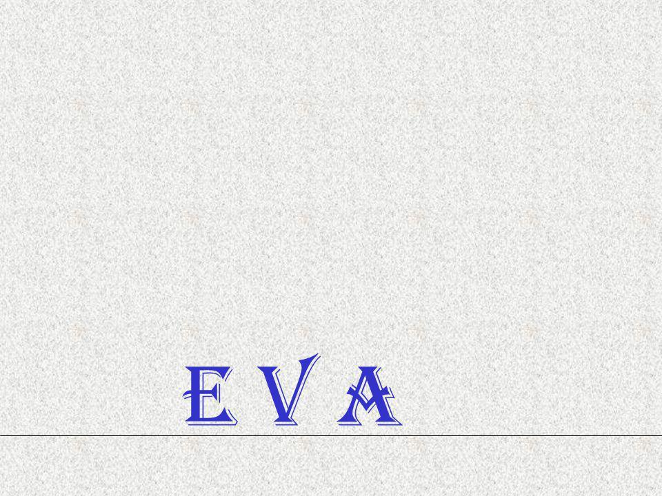 E V A