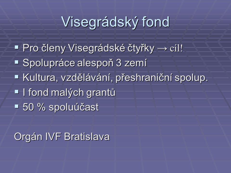 Visegrádský fond  Pro členy Visegrádské čtyřky → cíl!  Spolupráce alespoň 3 zemí  Kultura, vzdělávání, přeshraniční spolup.  I fond malých grantů