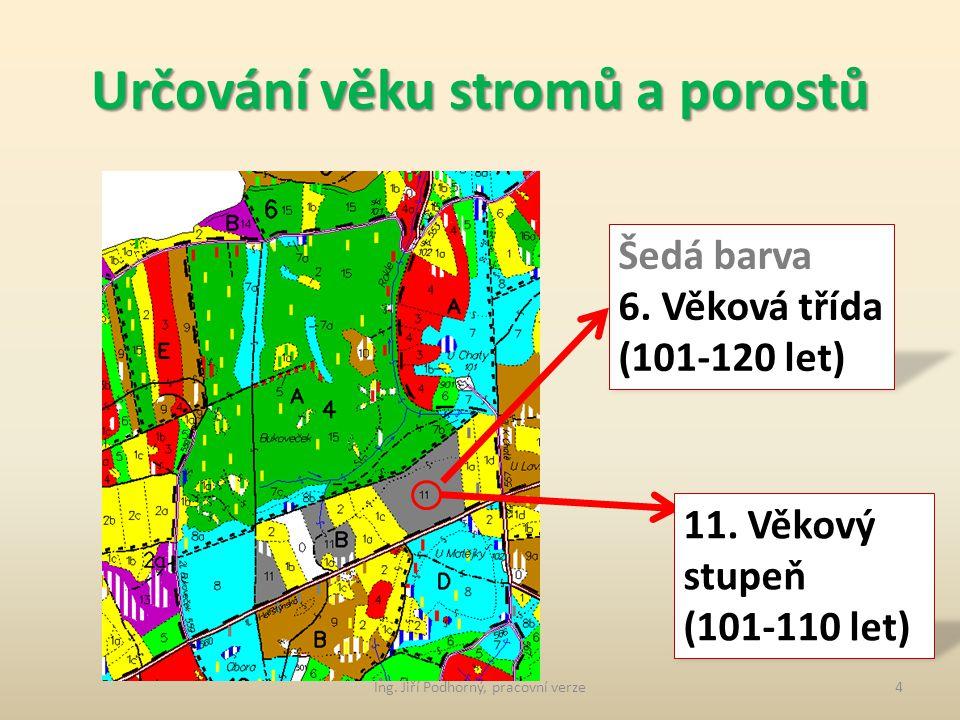 Určování věku stromů a porostů Šedá barva 6.Věková třída (101-120 let) 11.