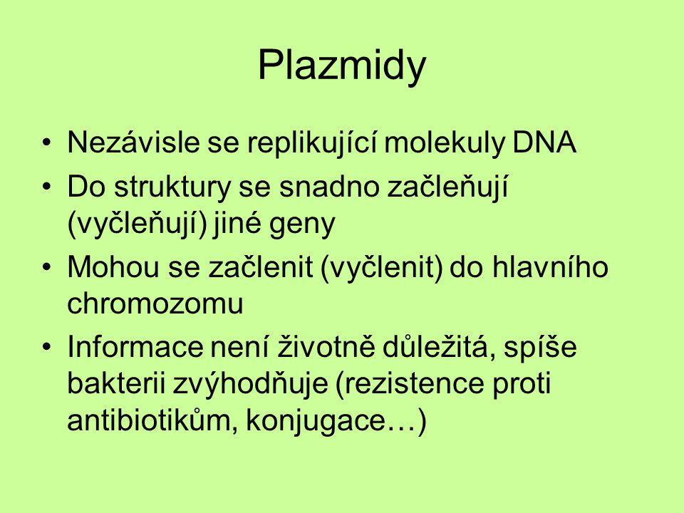 Plazmidy Nezávisle se replikující molekuly DNA Do struktury se snadno začleňují (vyčleňují) jiné geny Mohou se začlenit (vyčlenit) do hlavního chromoz