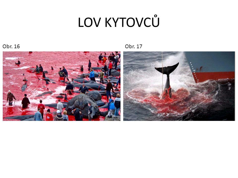LOV KYTOVCŮ Obr. 16 Obr. 17