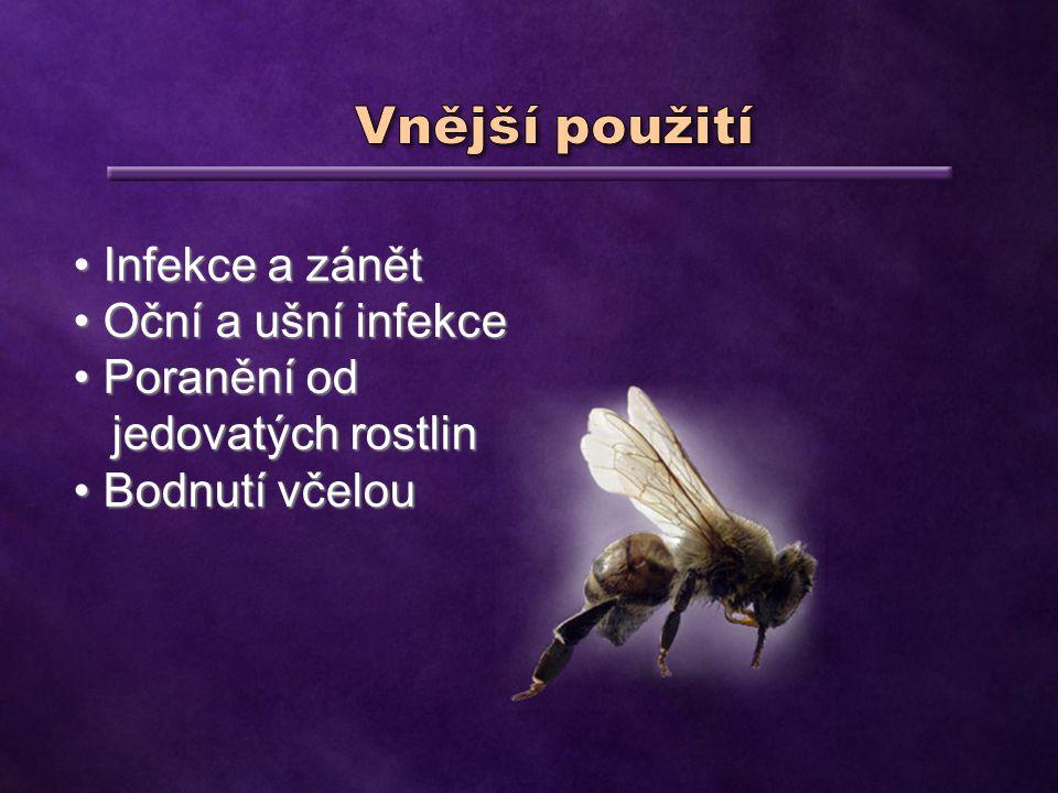 Infekce a zánět Infekce a zánět Oční a ušní infekce Oční a ušní infekce Poranění od Poranění od jedovatých rostlin jedovatých rostlin Bodnutí včelou Bodnutí včelou