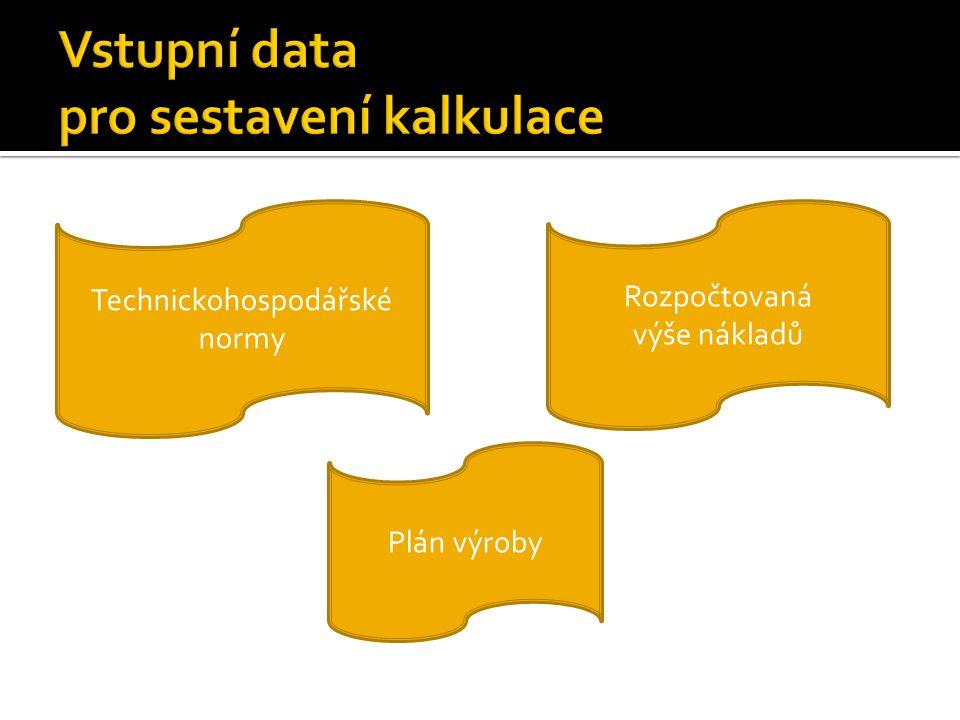 Technickohospodářské normy Rozpočtovaná výše nákladů Plán výroby