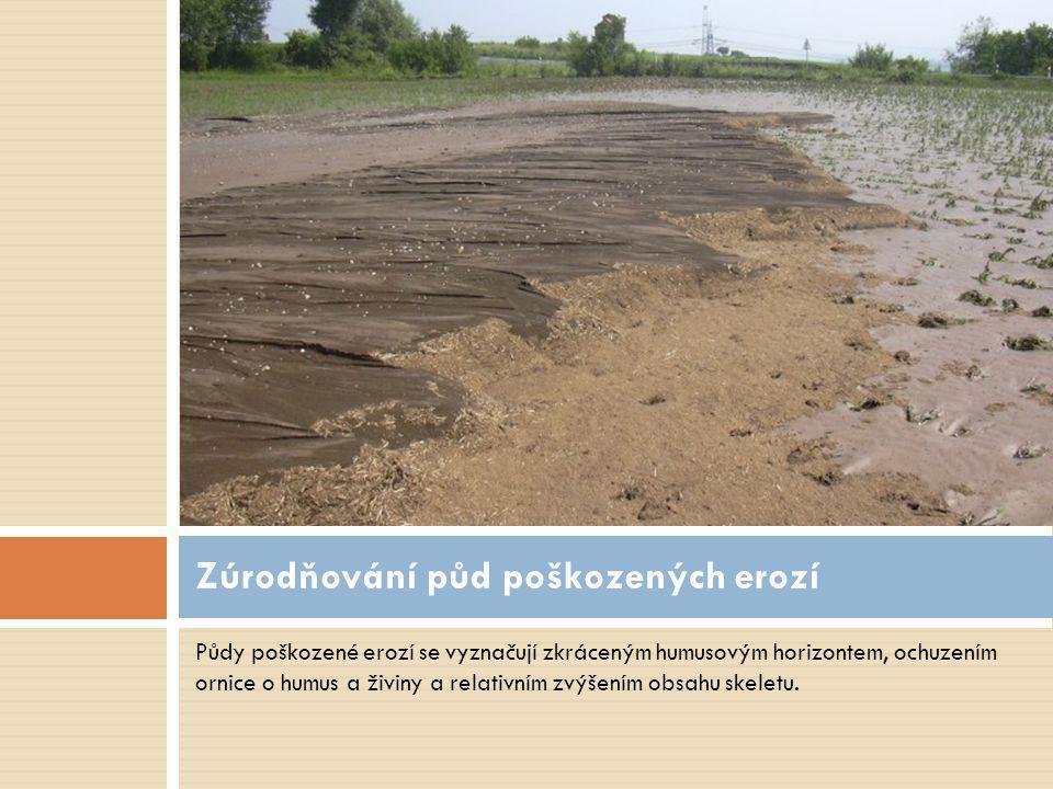 Půdy poškozené erozí se vyznačují zkráceným humusovým horizontem, ochuzením ornice o humus a živiny a relativním zvýšením obsahu skeletu. Zúrodňování