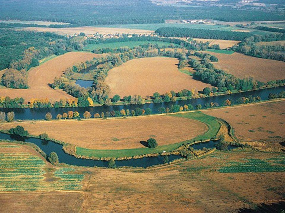 Meliorace historie  Meliorací může být například:  odvodnění zamokřené půdy nebo naopak zavlažování půd s nedostatkem vláhy,  vápnění silně kyselých půd či vylehčování těžkých půd  protierozní ochranu půd  lesnické meliorace (vysazování melioračních dřevin atd.).