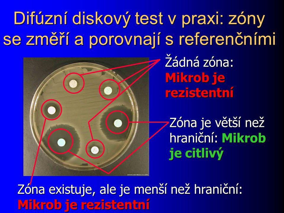 Difúzní diskový test v praxi: zóny se změří a porovnají s referenčními www.medmicro.info Žádná zóna: Mikrob je rezistentní Zóna je větší než hraniční: