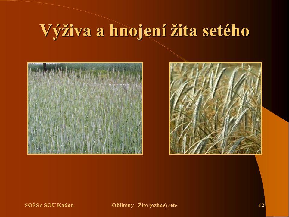 SOŠS a SOU KadaňObilniny - Žito (ozimé) seté12 Výživa a hnojení žita setého