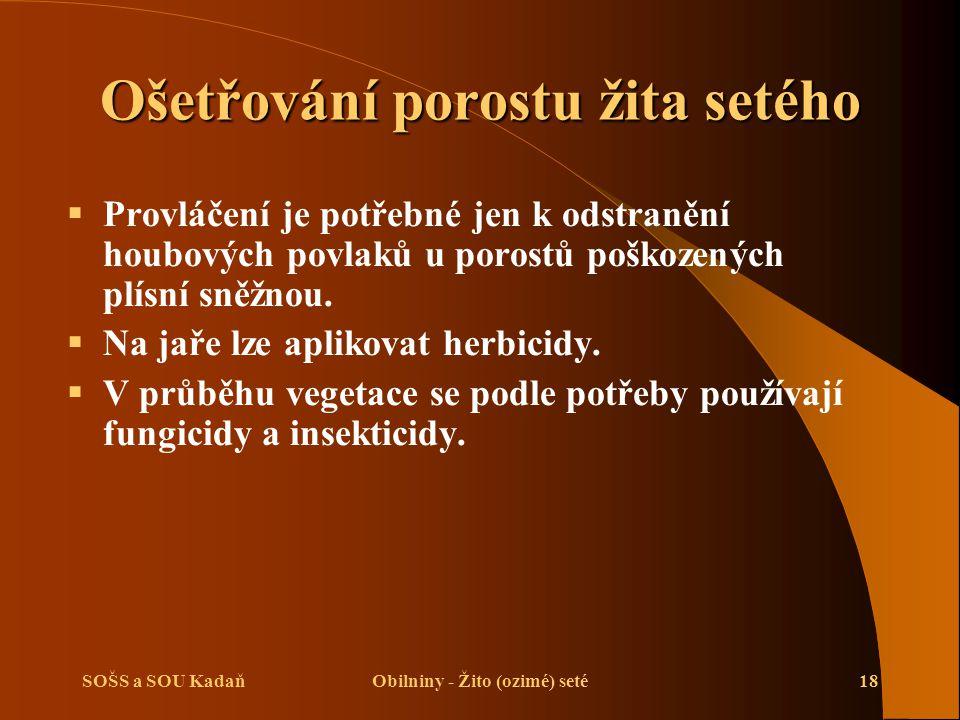 SOŠS a SOU KadaňObilniny - Žito (ozimé) seté18 Ošetřování porostu žita setého  Provláčení je potřebné jen k odstranění houbových povlaků u porostů po