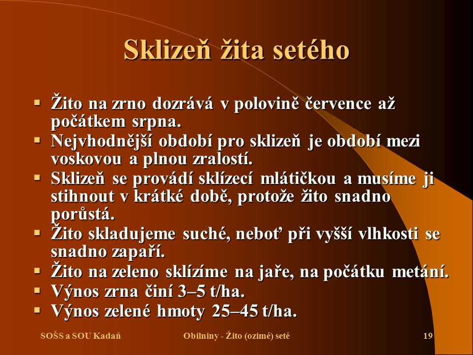 SOŠS a SOU KadaňObilniny - Žito (ozimé) seté19 Sklizeň žita setého  Žito na zrno dozrává v polovině července až počátkem srpna.  Nejvhodnější období