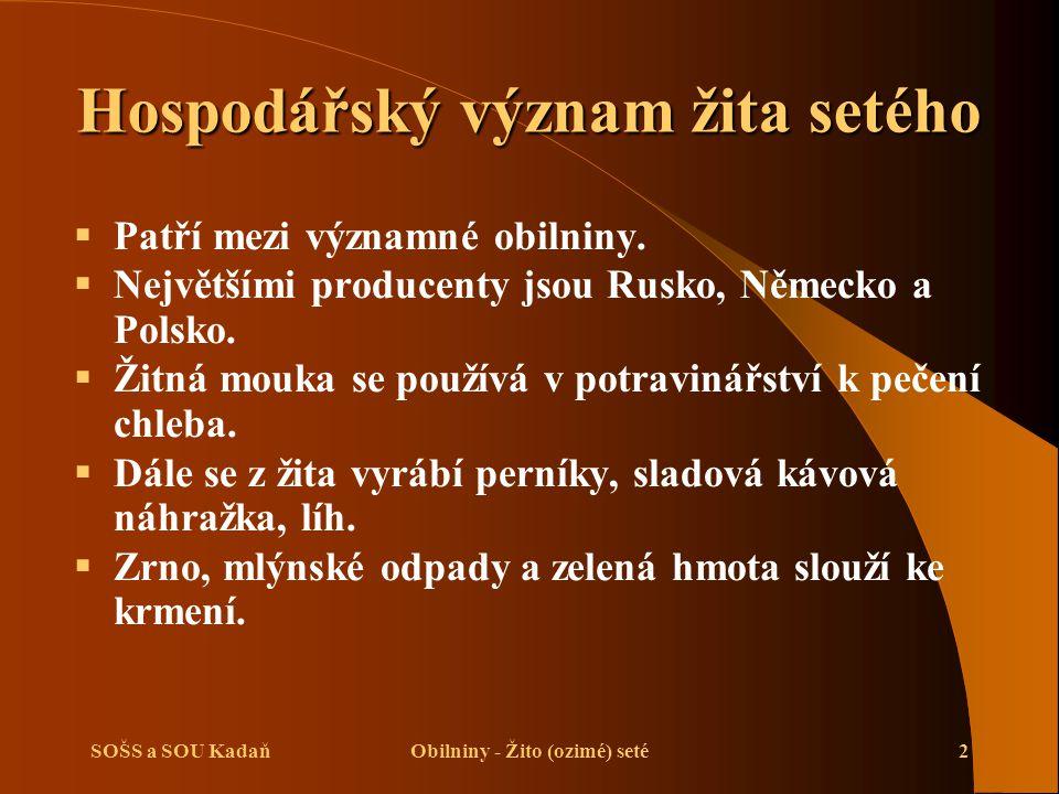 SOŠS a SOU KadaňObilniny - Žito (ozimé) seté2 Hospodářský význam žita setého  Patří mezi významné obilniny.  Největšími producenty jsou Rusko, Němec