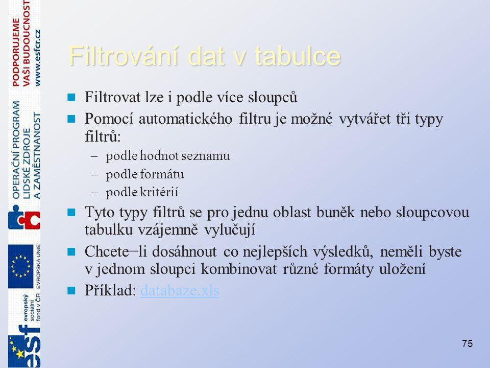 Filtrování dat v tabulce Filtrovat lze i podle více sloupců Pomocí automatického filtru je možné vytvářet tři typy filtrů: –podle hodnot seznamu –podl