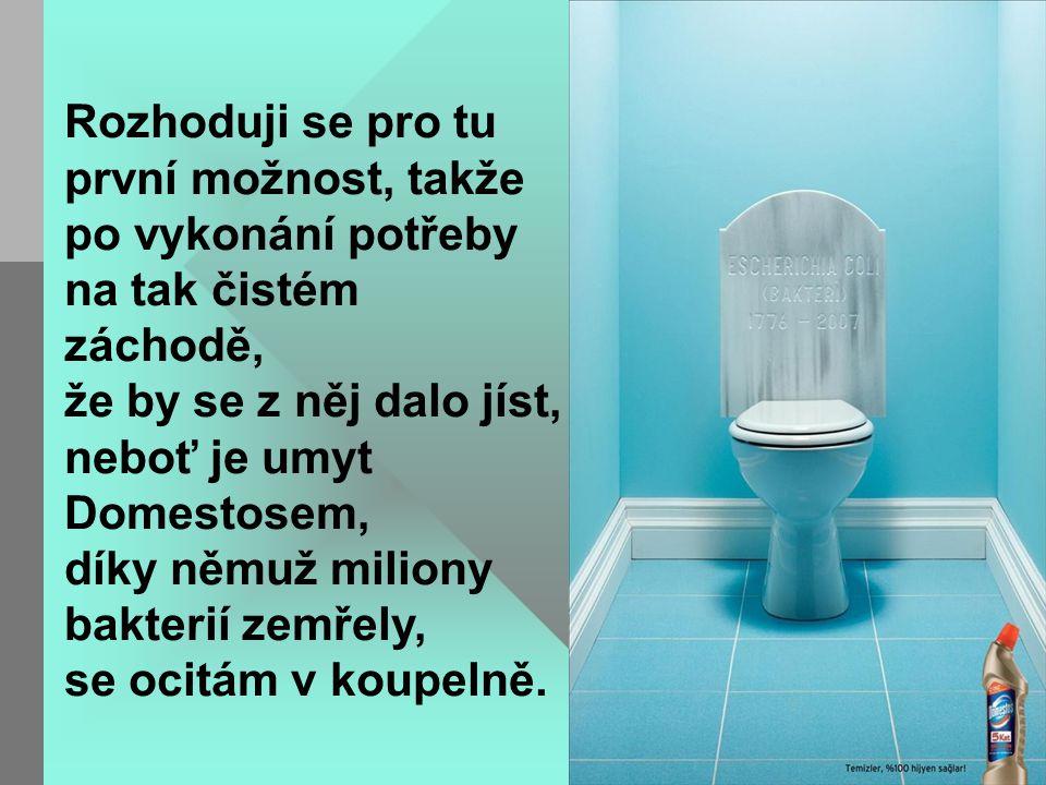 Rozhoduji se pro tu první možnost, takže po vykonání potřeby na tak čistém záchodě, že by se z něj dalo jíst, neboť je umyt Domestosem, díky němuž miliony bakterií zemřely, se ocitám v koupelně.