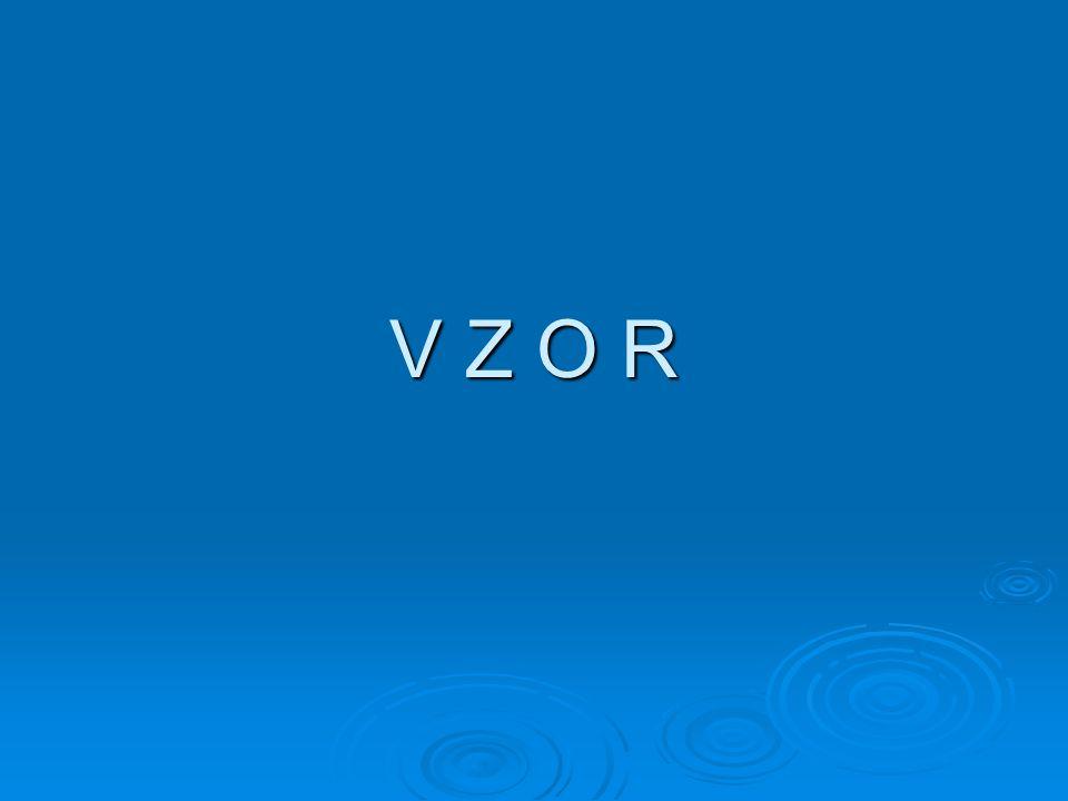 V Z O R